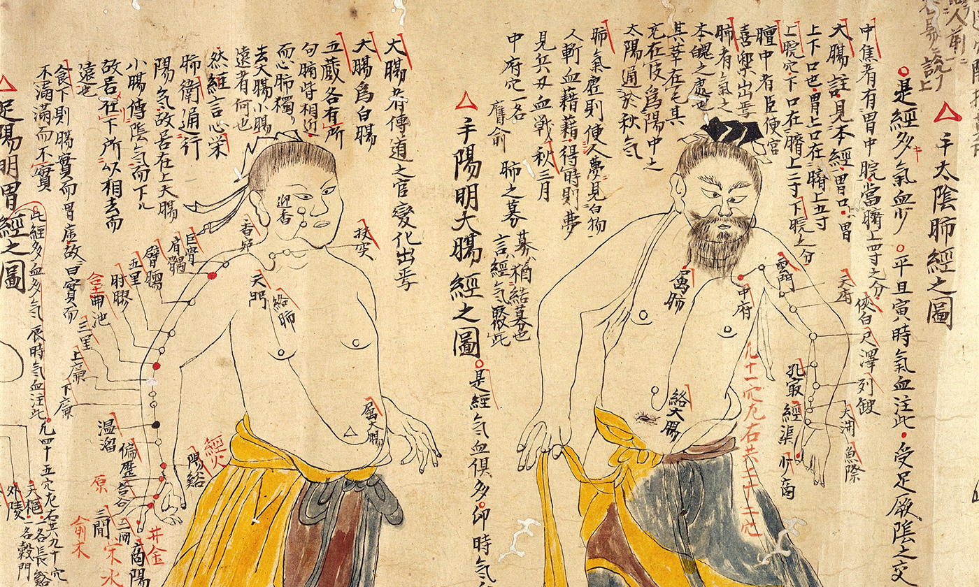 Detail from an 18th-century Chinese depiction of the various acupuncture points. <em>Photo courtesy Wellcome Images</em>