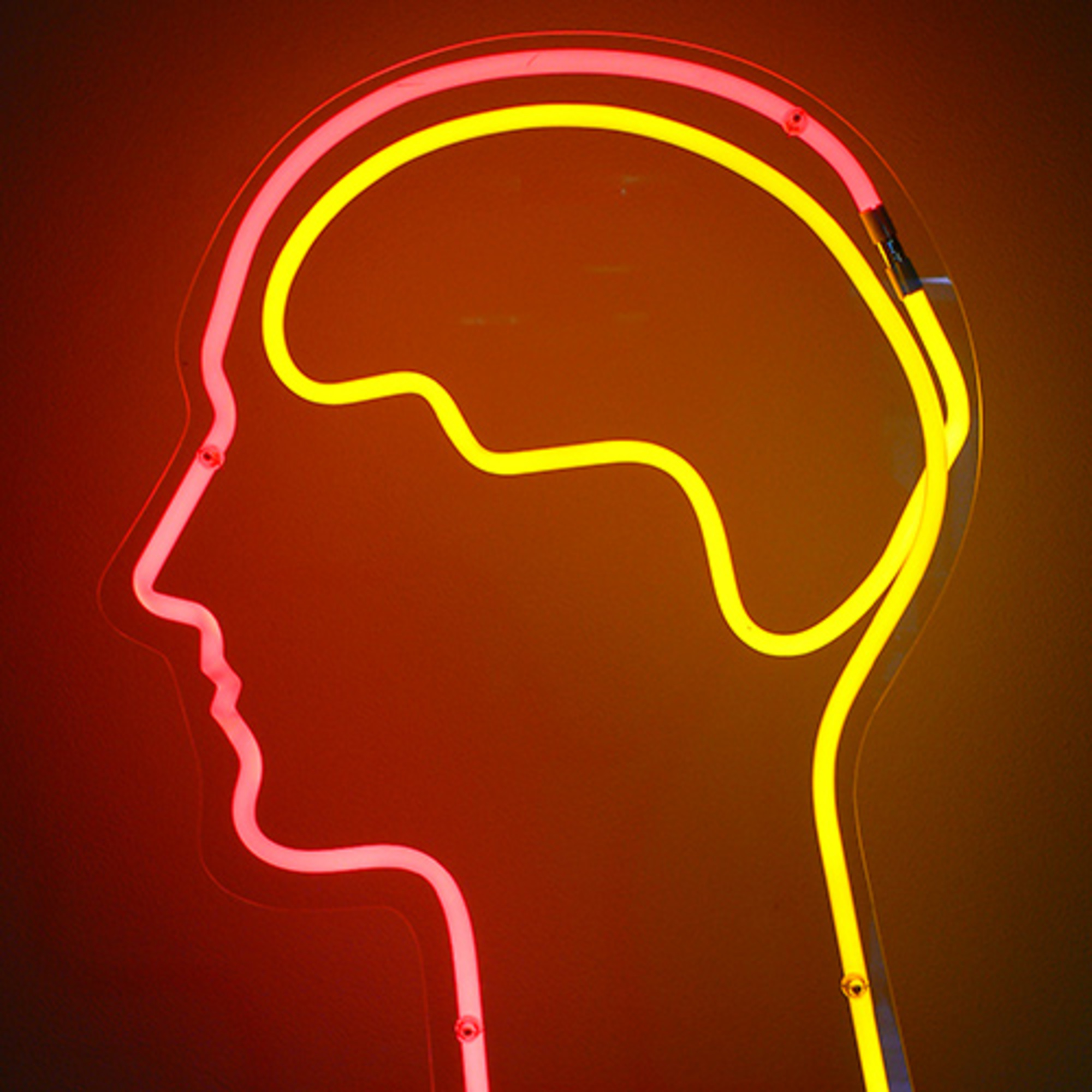 brain essay mind philosophical psychology storm The identity theory of mind holds it follows that mind-brain 'mad pain and martian pain' and 'postscript', in d lewis, philosophical papers.