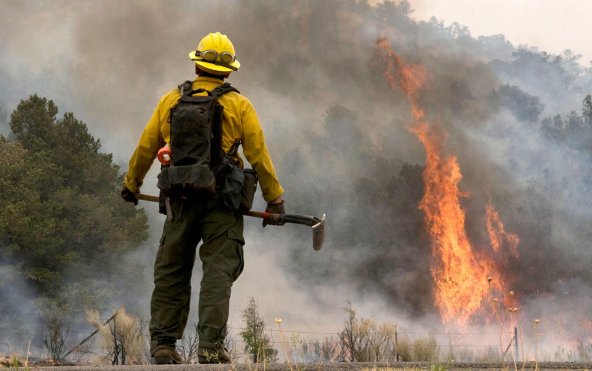 Header wallow fire