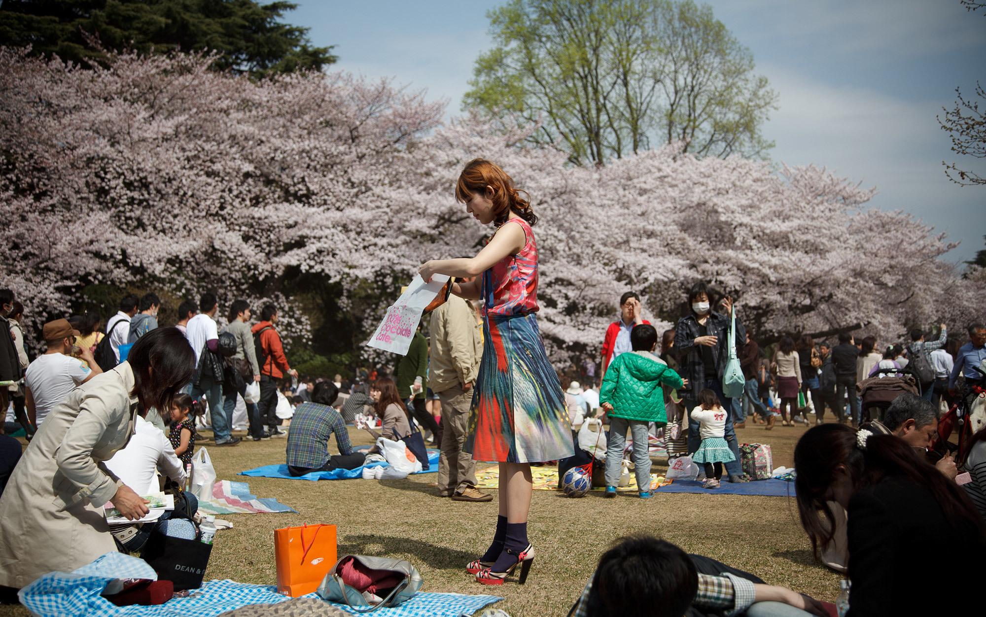 Sakura | Aeon