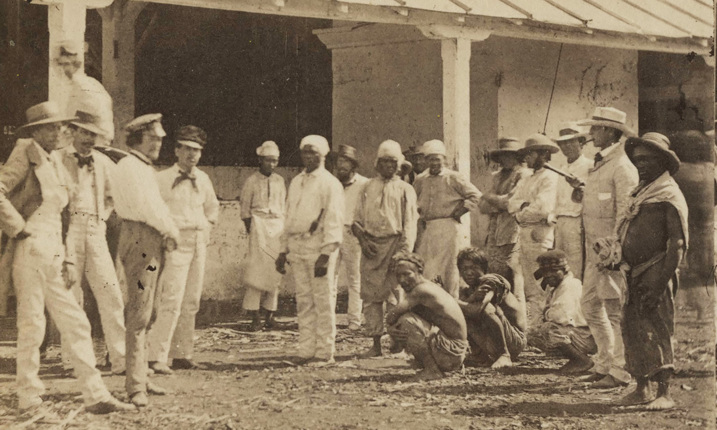 essays in southern african labour history Slavery and the economy of the southern  this is what african slaves were to the southern  from the beginning was heavily dependent on forced labour.
