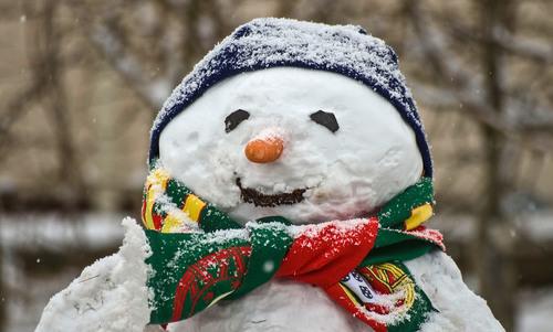 How do you teach a car that a snowman won't walk across the road? | Aeon